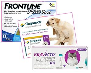 Several effective products are available for preventing and eliminating fleas on pets