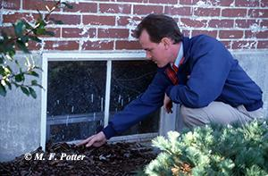 Do not allow mulch to contact wood siding, doors and windows.