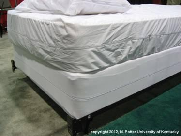 Bed bug mattress covering