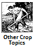 Other Crops