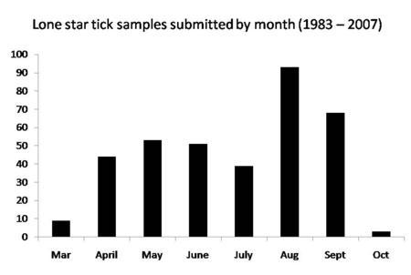 Lone Star Tick Seasonal Activity