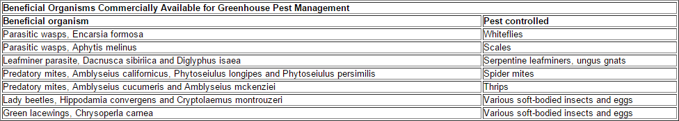 Greenhouse Insect Management | Entomology