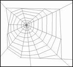 Typical Orb Web