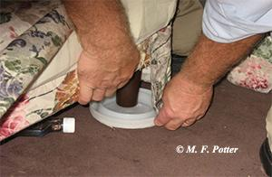 Dish-shaped traps can be placed under beds and sofas to help monitor for bed bugs.