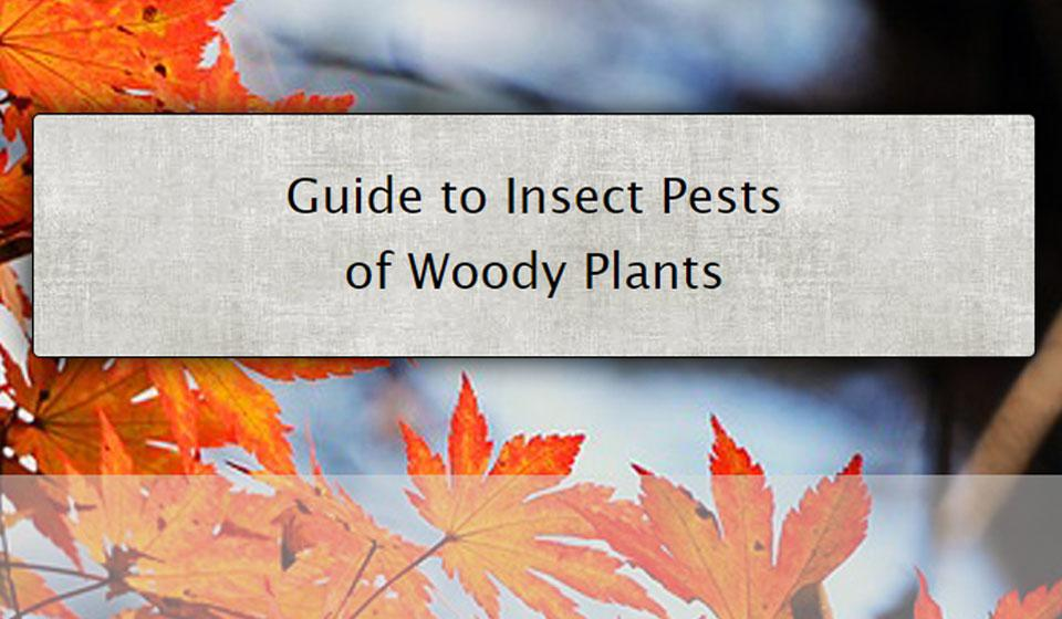 Pests of Woody Plants